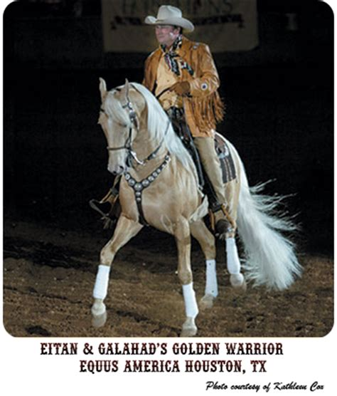 cowboy dressage and competing with kindness as the goal and guiding principle books cowboy dressage 174 at wolf creek ranch