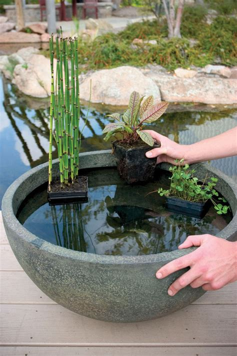 aquascape patio pond aquatic patio ponds 24 quot aquascapes