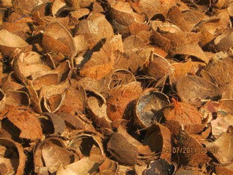 Jual Batok Kelapa Palembang mesin pembuat tepung mengolah limbah batok kelapa