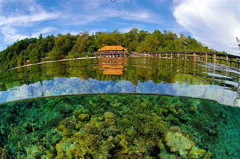 walea dive resort walea dive resort ana sulawesi tengah my beautiful