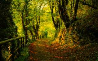 Best Place To Buy Photo Albums Autumn Wallpaper By Svenmueller On Deviantart