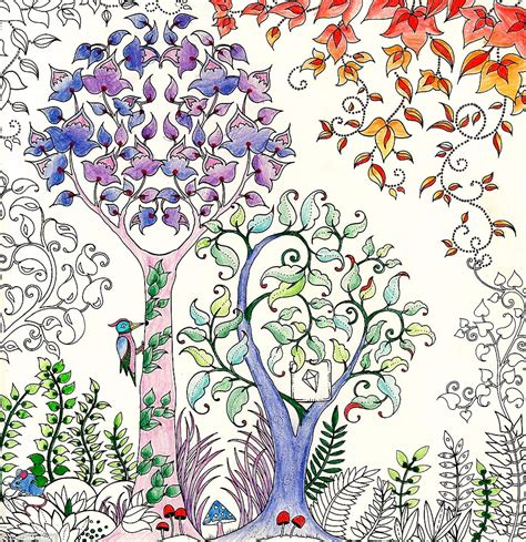 secret garden coloring book completed johanna basford sells million copies of secret garden