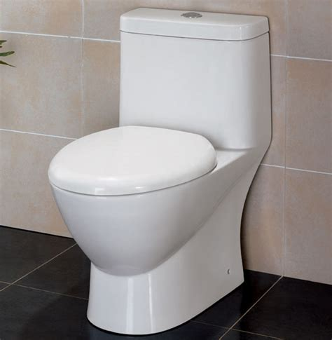 Eco Flush Toilet Not Flushing by Eago Usa Modern Dual Flush One Piece Eco Friendly