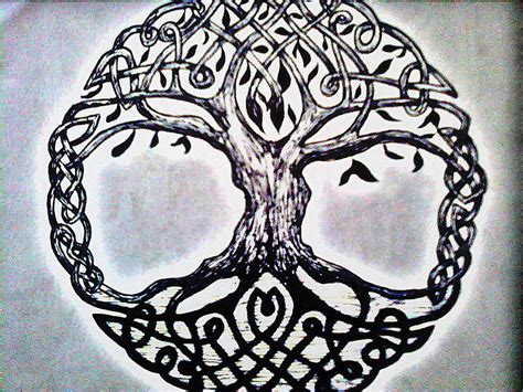 Celtic Tree Of Life Quotes Quotesgram Celtic Tree Of Images