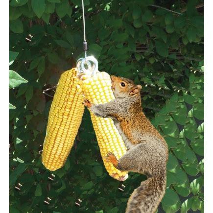 songbird essentials deluxe squngee squirrel bungee feeder