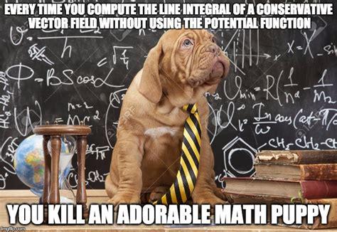 math puppy math puppy memes imgflip
