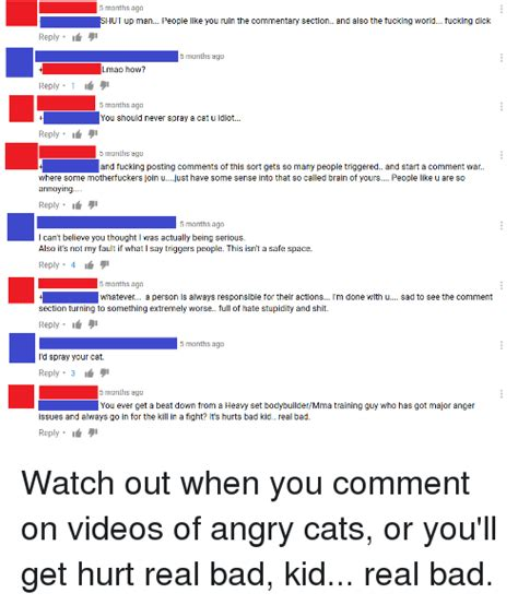 can you get someone sectioned 25 best memes about angry cats angry cats memes