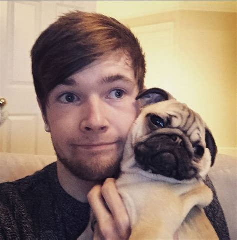 dantdm pug gallery dantdm s pug youtuber review