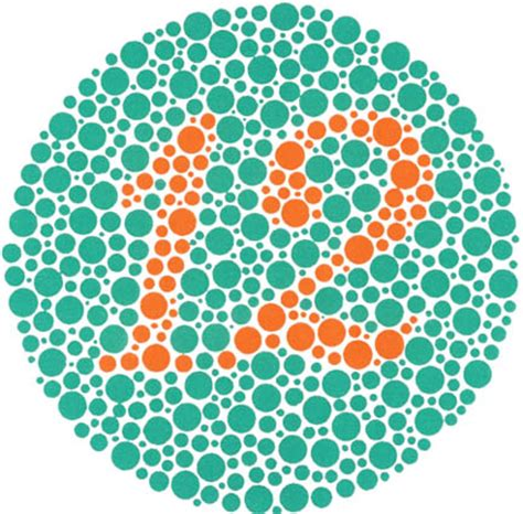 Ishihara Color Blindness Test 82 ishihara color blindness test