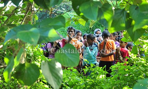 Is The Mba Dead by Mangaluru Missing Aloysius Mba Student Found Dead