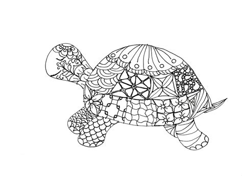 coloring pages for adults turtles sea turtles coloring pages coloring pages for adults turtles