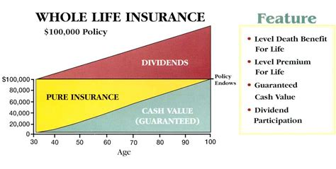 whole life policy personal injury lawyers learn your rights