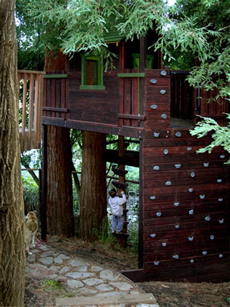 dog tree house barbara butler extraordinary play structures for kids magic treehouse at the edge of