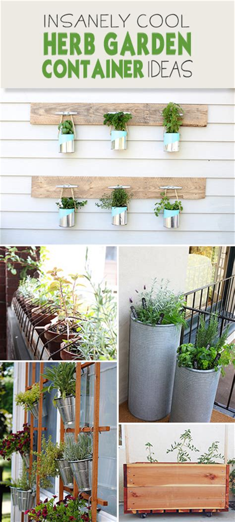 herb container garden ideas insanely cool herb garden container ideas the garden glove