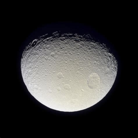 the teahouse of the august moon books cassini images