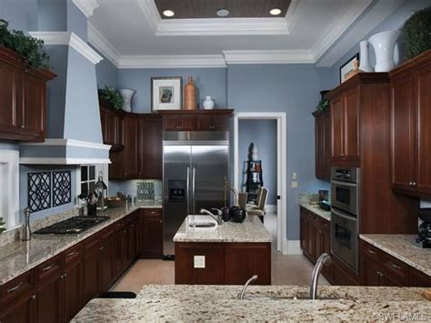 blue walls in kitchen dark kitchen cabinets with blue walls quicua com