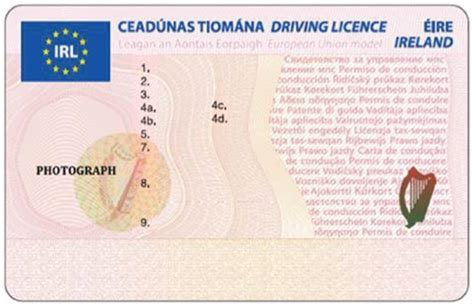 driving license template templates of new cc size driving licences boards ie