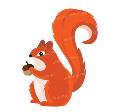 clipart pictures squirrel clipart baby squirrel pencil and in color
