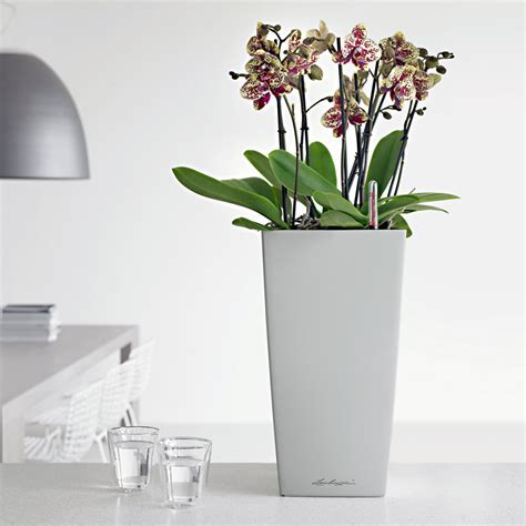 modern planters indoor office planters modern indoor planters planters unlimited