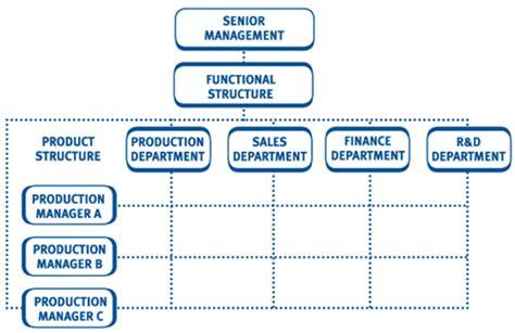 matrix structure diagram a matrix structure