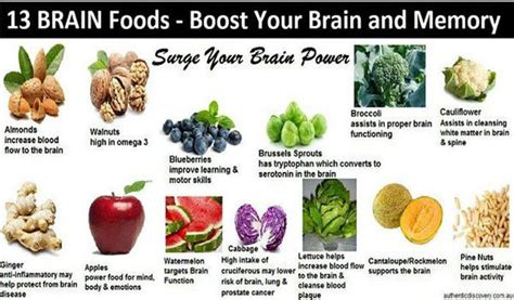 Food Broaden Your Culinary Experience by Best Foods To Boost Your Memory Let Me Groom