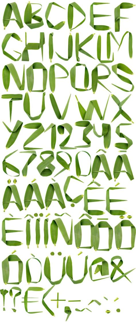 typography nature the world s catalog of ideas