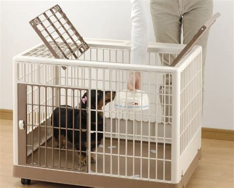best way to crate a puppy how to best potty a puppy breeds picture