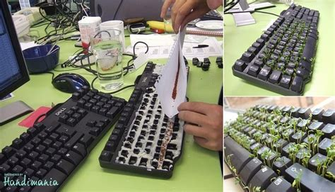 Office Pranks Office Prank Put Sprout Seeds In A Keyboard