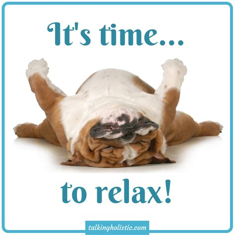 Relax Meme - it s time to relax wellbeing animals pinterest