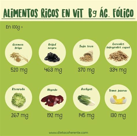 alimentos ricos en vitamina b9 264 best infograf 205 as images on