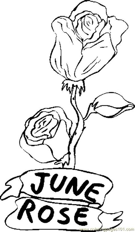 coloring pages  june rose  natural world flowers