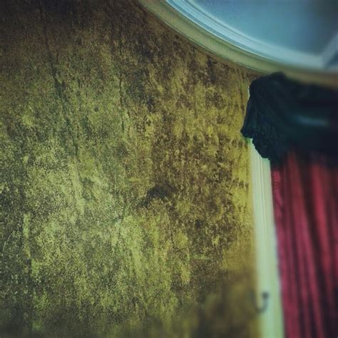wallpaper over dark paint 1000 images about house of stutzman on pinterest sponge