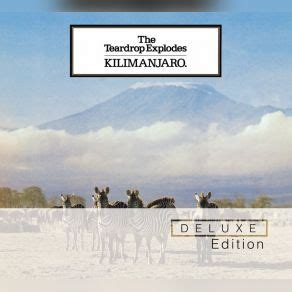 the promise of kilimanjaro books kilimanjaro deluxe edition cd1 the teardrop explodes