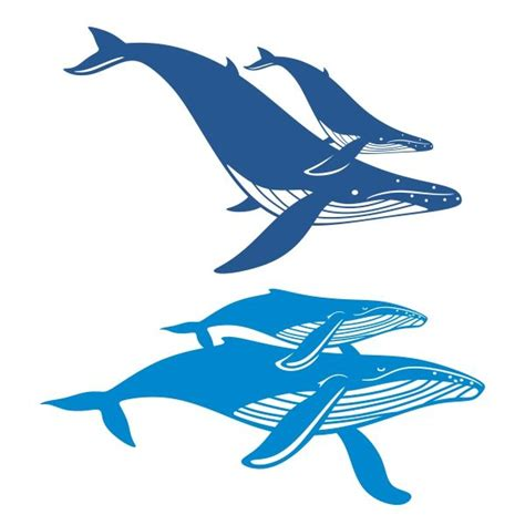 Whale Svg Cut File By Nrcdesignstudio Thehungryjpeg - 333 best images about animal silhouettes vectors