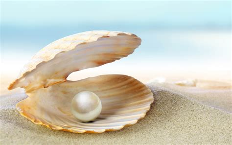 The Pearls all you need to about pearls rainbow minerals