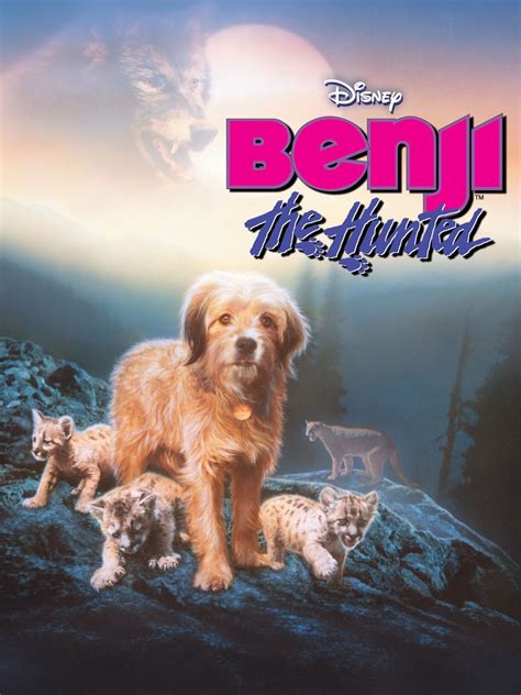 benji the benji the hunted buy rent and tv on flixster
