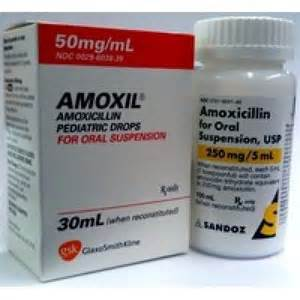 side effects of amoxicillin in dogs amoxicillin for dogs cibacene 5 mg comprim 233