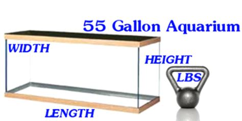 aquarium tank size dimensions and weight oceanview creations