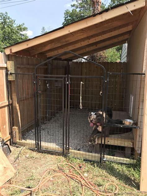 built  dog kennel   side   shed dogstuffoutdoor