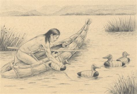duck boat drawing native american uses malheur u s fish and wildlife