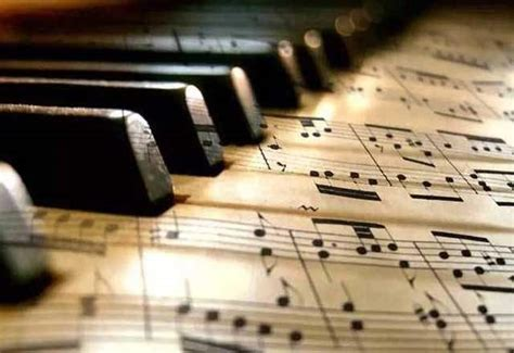 lezione di a casa lezioni di pianoforte a casa tua a roma kijiji annunci