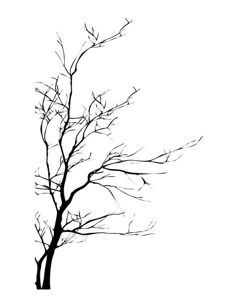 bare branch tree buy wholesale bare tree branches from china bare