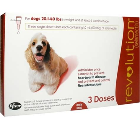 revolution flea for dogs revolution for dogs 20 1 40 lbs 3 mnth