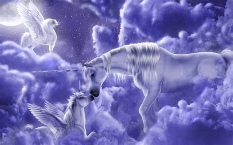 Lovely Pegasus magical creatures images unicorns hd wallpaper and background photos 7841390