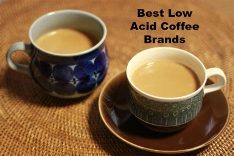 Best Low Acid Coffee Brands That You'll Fall in Love With