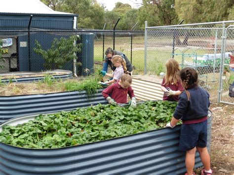 Crib Point Primary School by Lunchtime Activities Crib Point Primary School