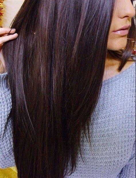 hair with purple tint chestnut brown hair tumblr