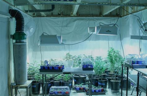 Grow Room Ventilation by Grow Hack 7 Ways Of Silencing Your Growroom 183 High Times