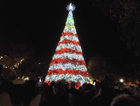 johnstown s christmas tree central park named a top