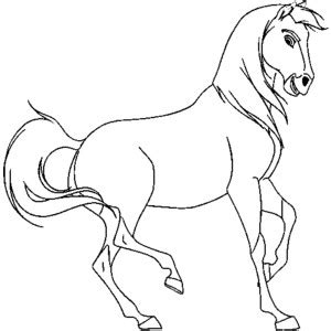 spirit stallion of the cimarron coloring pages polyvore